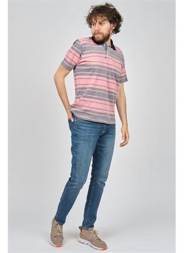 Arslanlı Arslanlı Erkek Çizgili Polo Yaka T-Shirt  Pembe